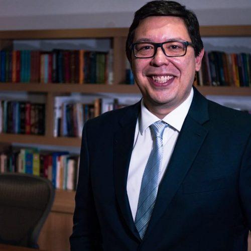 RICARDO PEREIRA DE FREITAS GUIMARÃES